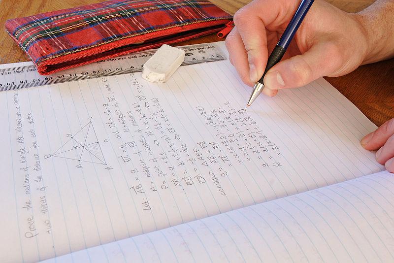 Studies effectiveness homework